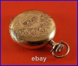 Antique Lady Elgin Pocket Watch Gold Fill Hunter Case Fancy Dial S/N 11816204