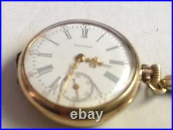 Rare 1906 AMERICAN WALTHAM Pocket / Wrist Watch Size 00 Mvmt 20Yrs Star GF Case